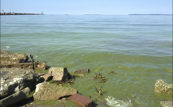 Lake Erie shoreline along
