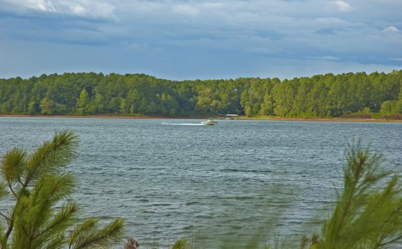 Lake Hartwell water
