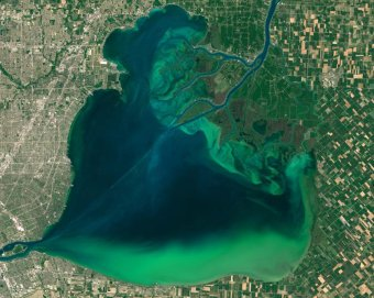 Algae Bloom in Lake St. Clair