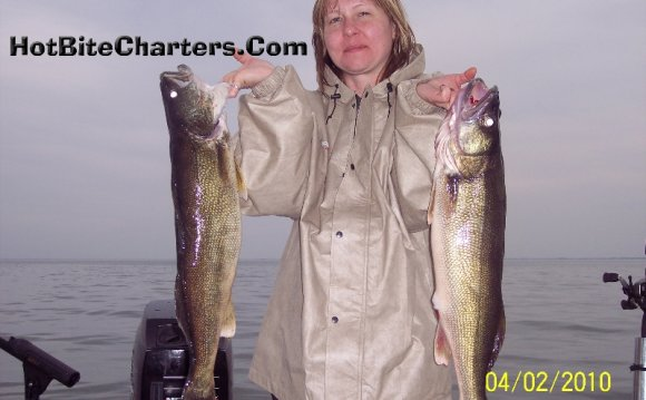 Lake michigan laurentian great lakes for Lake erie walleye fishing report