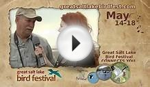 17th Annual Great Salt Lake Bird Festival 3