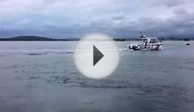 Great White Shark Sighted in Lake Macquarie