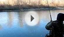 Lake Erie Steelhead Action March 17, 2010 Extra